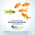 CFO2Grow Website Launch Promotion