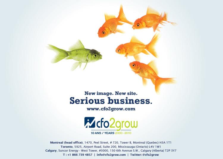 CFO2Grow Website Launch Promotion