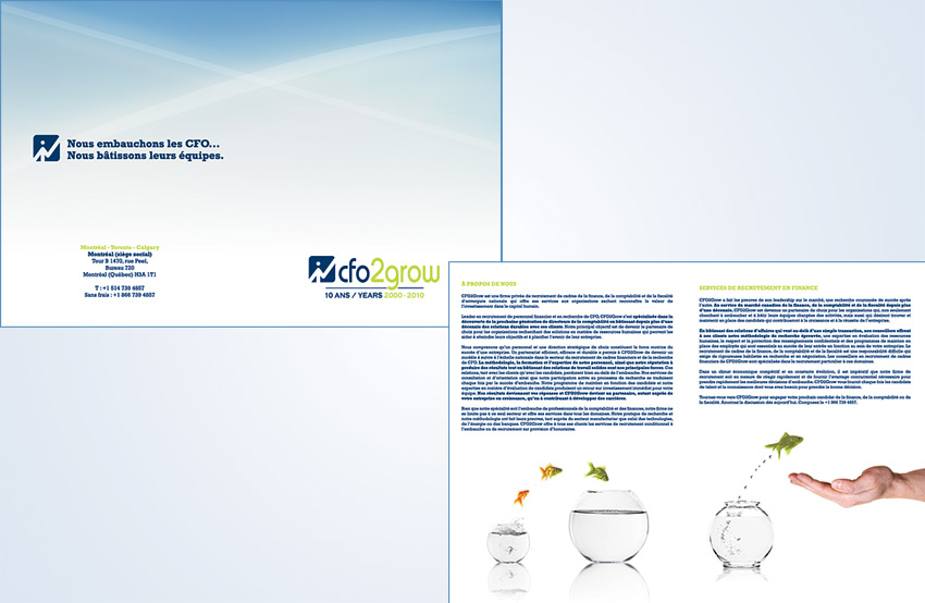 CFO2Grow Brochure