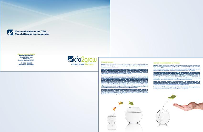 CFO2Grow Brochure